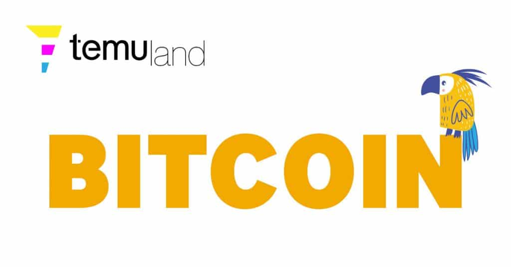 Bitcoin is a decentralized digital currency that can be sent from user to user on the peer-to-peer bitcoin network without the need for intermediaries.