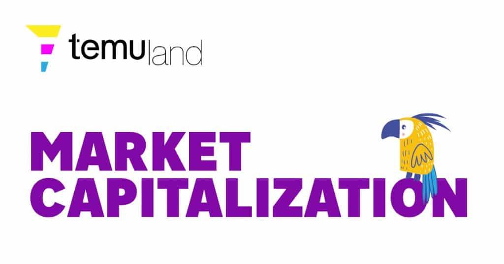 temuland crypto glossary market capitalization