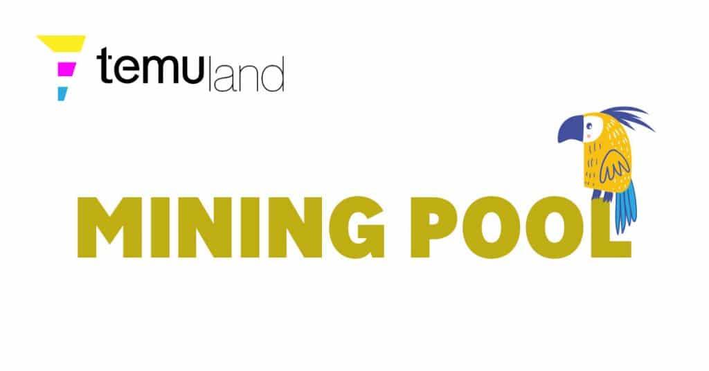 temuland crypto glossary - mining pool