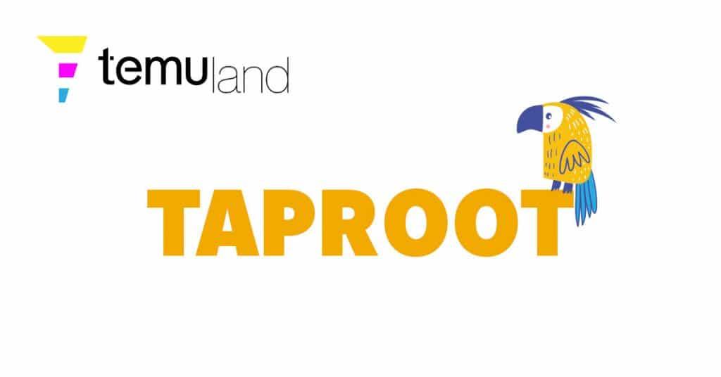 temuland crypto glossary taproot