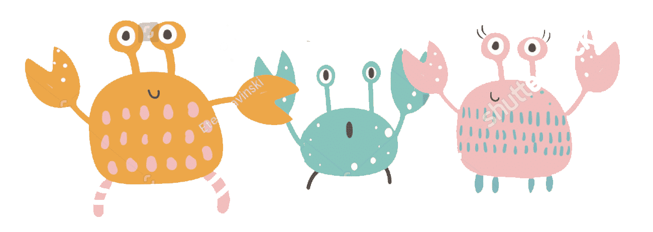 crab family on a weekend stroll