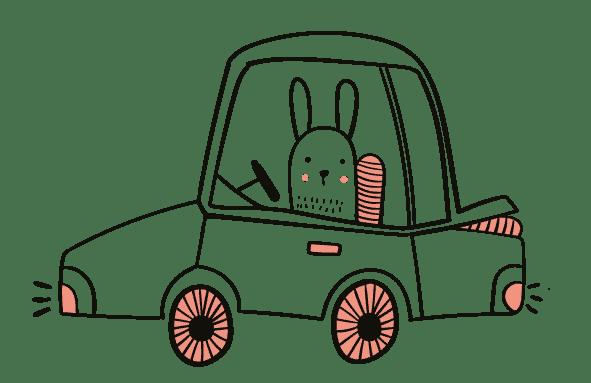 auto haas normal