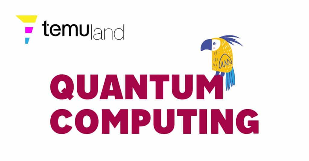 temuland crypto glossary - quantum computing