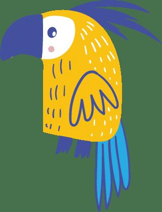 papagei original